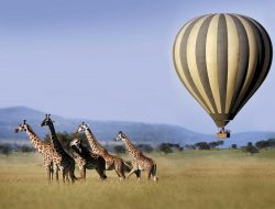 Where to go in Africa in March