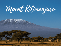 12-Day Kilimanjaro Climb & Safari