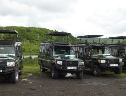 Car Rentals in Rwanda