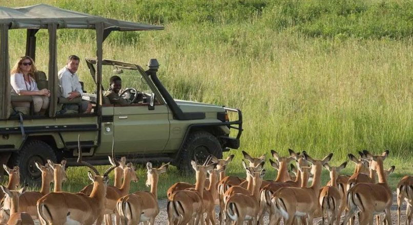 When to go in Africa in December