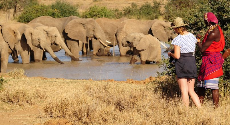 9-Day Wild Karamoja – Kidepo and Murchison Falls