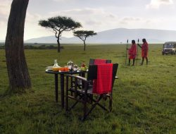 3-Day Mara Flying Luxury Safari