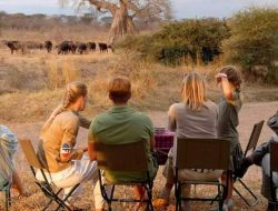 4-Days Luxury Safari Nakuru and Mara