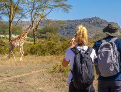 6-Day Masai Mara Nakuru Amboseli Safari