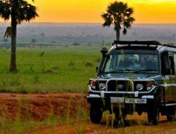 7-Day Highlights of Rwanda