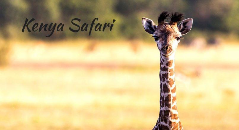 7-Day Northern & Southern Kenya