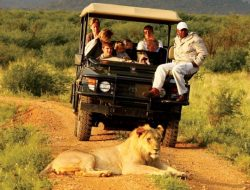 7-Days Uganda Wildlife Safari