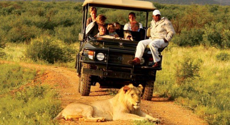 7-Days Uganda Wildlife Safari