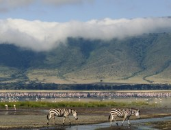 Protecting African Natural Wanders