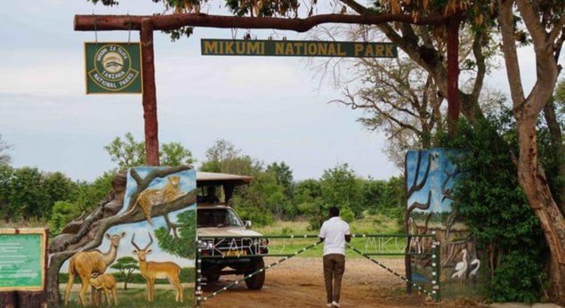 Tanzania Travel Advice   2021 Tanzania Safari